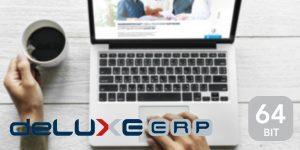 deLUXE-ERP V17 - einfach effizienter Arbeiten 1